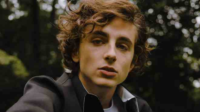 Image result for timoti chalamet