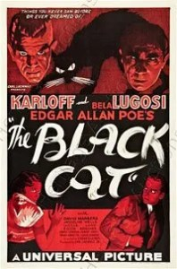 blackCat_B