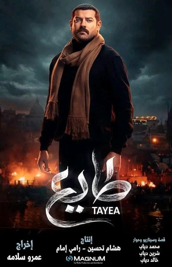 Tayee