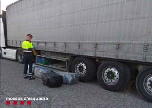 Els mossos detenen un veí de Sant Cugat amb 220 quilos de Marihuana