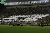 Botafogo 1x0 River-PI (91)