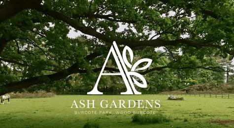 Ash gardens