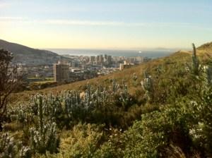 View across Cape Town from below Devil's Peak