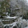 Maltempo, Toscana: allerta arancione nel Nordovest. Pericolo vento, ghiaccio e neve