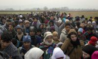 Immigrazione: Caritas e associazioni di sinistra si scagliano già contro la stretta del governo giallo-verde