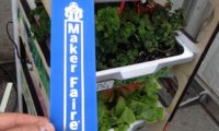 Tecnologie innovative per la coltivazione a LED