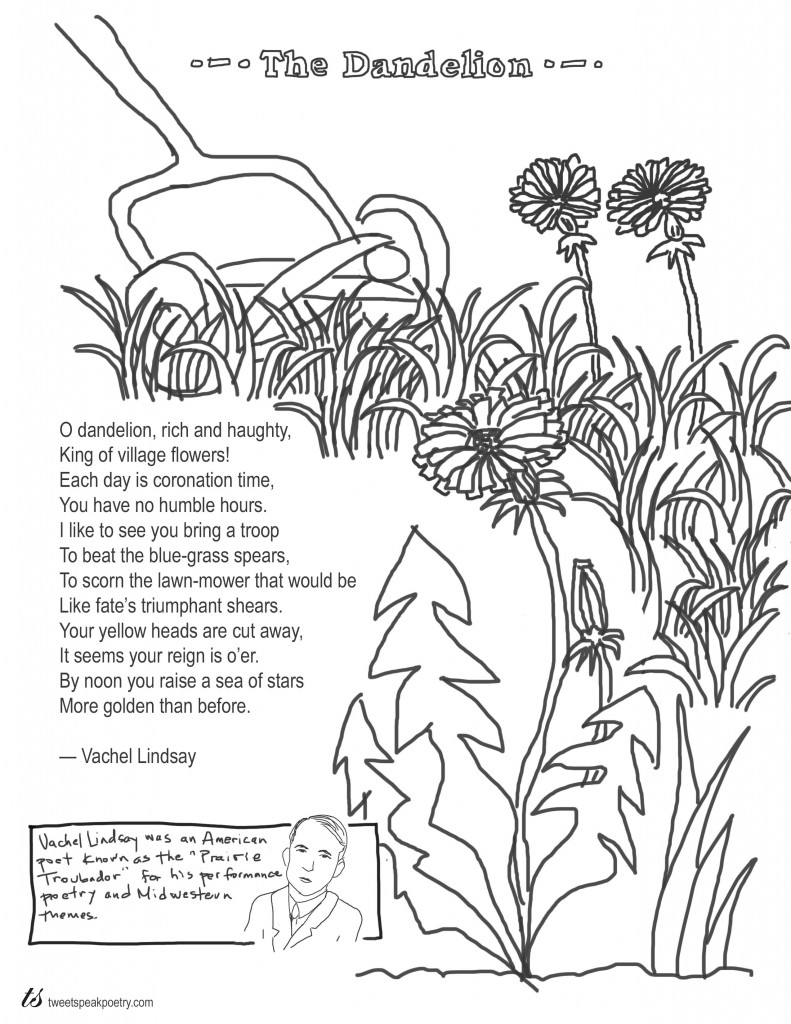 Coloring Page Poems: The Dandelion by Vachel Lindsay