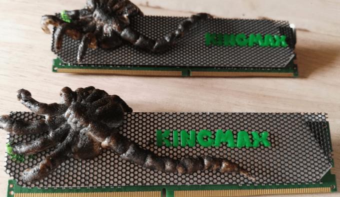 kingmax-mod-3-image