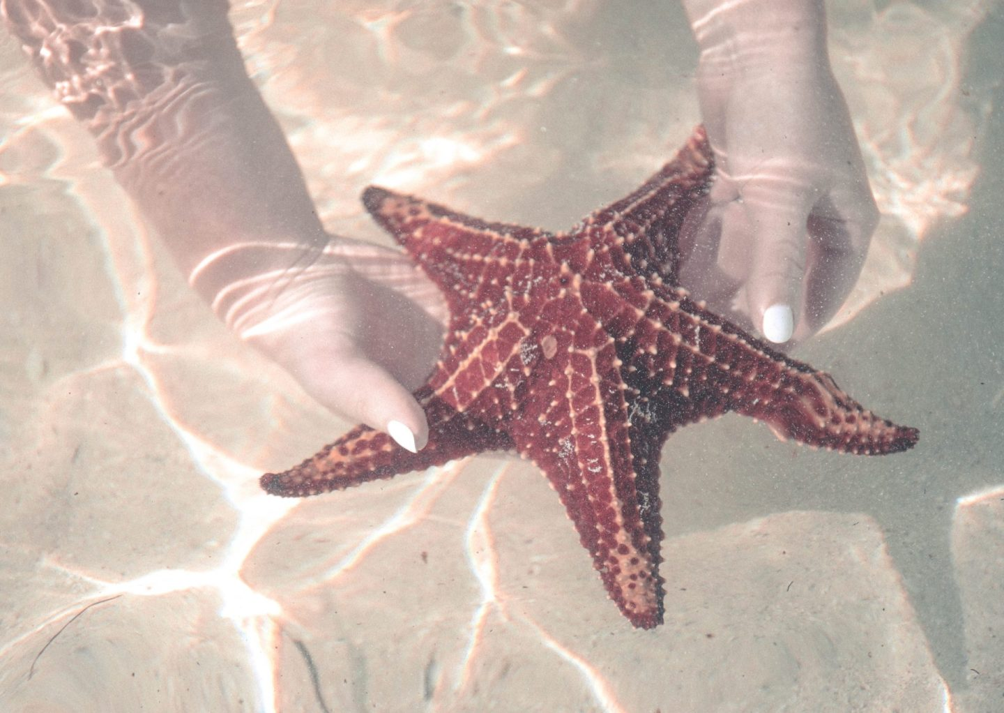 Starfish Point Cayman Islands