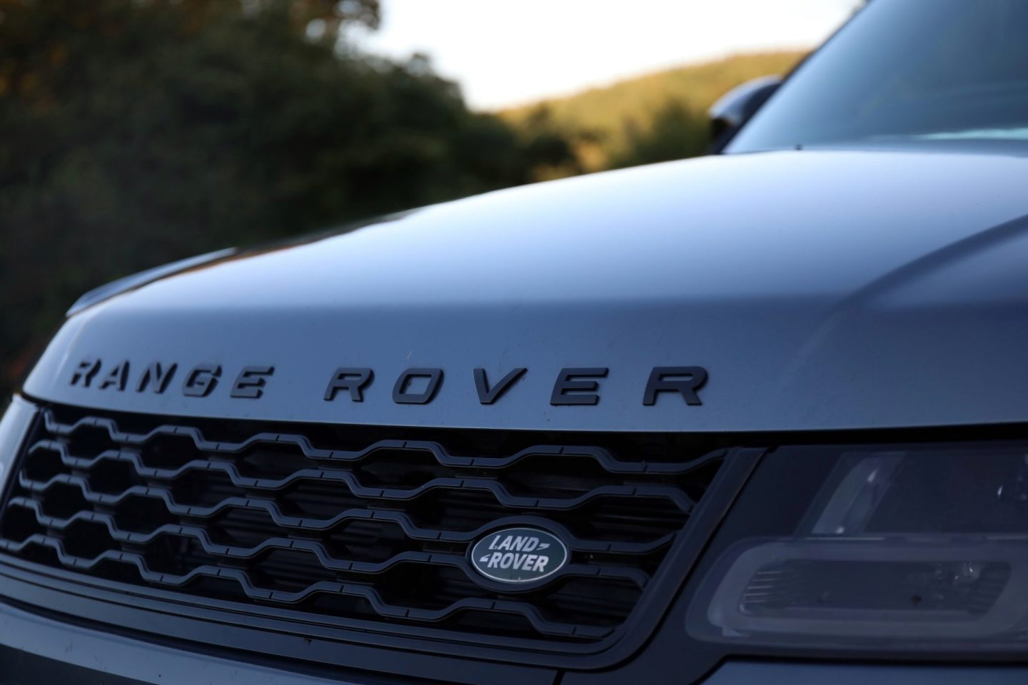 Range Rover SDV8 Autobiography Dynamic Front Grill