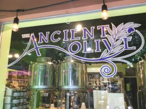The Ancient Olive