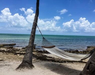 Hammock in Key West