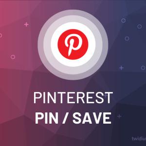 Buy Pinterest Pin / Save