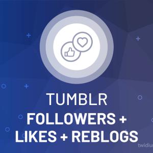 Buy Tumblr Followers + Likes + Reblogs