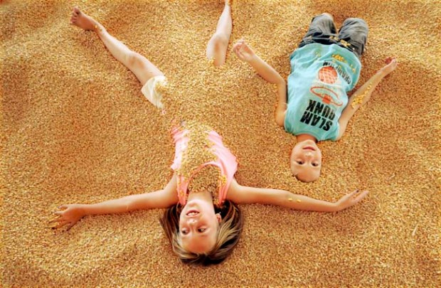 Emma Smith, 9, and her brother Jackson,6, of Farmington, bury themselves in corn in the corn pit attraction at Sever's Corn Maze and Fall Festival in Shakopee on Sunday, September 16, 2012. Sever's Corn Maze has been an attraction in the Twin Cities and started in 1997. The Fall Festival at the Corn Maze features a baby giraffe, pony rides, pig races, a corn pit, jumping pillows, hay rides and much more through October 28.(Pioneer Press: Sherri LaRose-Chiglo)