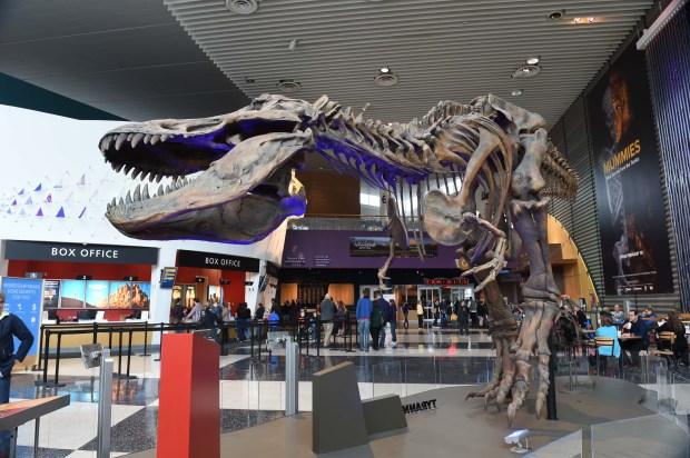 The main lobby of the Science Museum of Minnesota features a replica skeleton of a Tyrannosaurus rex. The museum is the most expensive building in downtown St. Paul, based on estimated market value. (Pioneer Press: Scott Takushi)