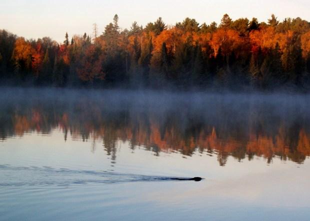 Bear Head Lake State Park is seen Oct. 2, 2012. (Pioneer Press: Tim Whitecotton)