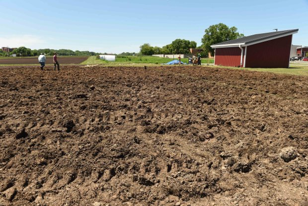Workers prepare a site where they will erect a hoop house, at Good Acre, a new nonprofit organization which aims to bridge the gap between small farmers and large producers and get fresh food into consumers hands, in Falcon Heights, Thursday, May 26, 2016. (Pioneer Press: Scott Takushi)