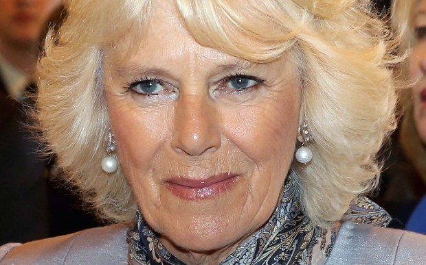 Camilla, Duchess of Cornwall and wife of Charles, Prince of Wales, is 69. (Getty Images: Chris Jackson)