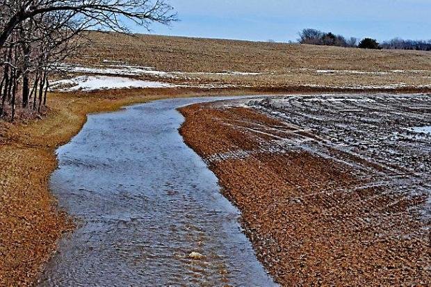 Many streams in southern Minnesota lack the 16.5- to 50-foot natural buffer strip required by state law. (Pioneer Press: Dave Orrick)