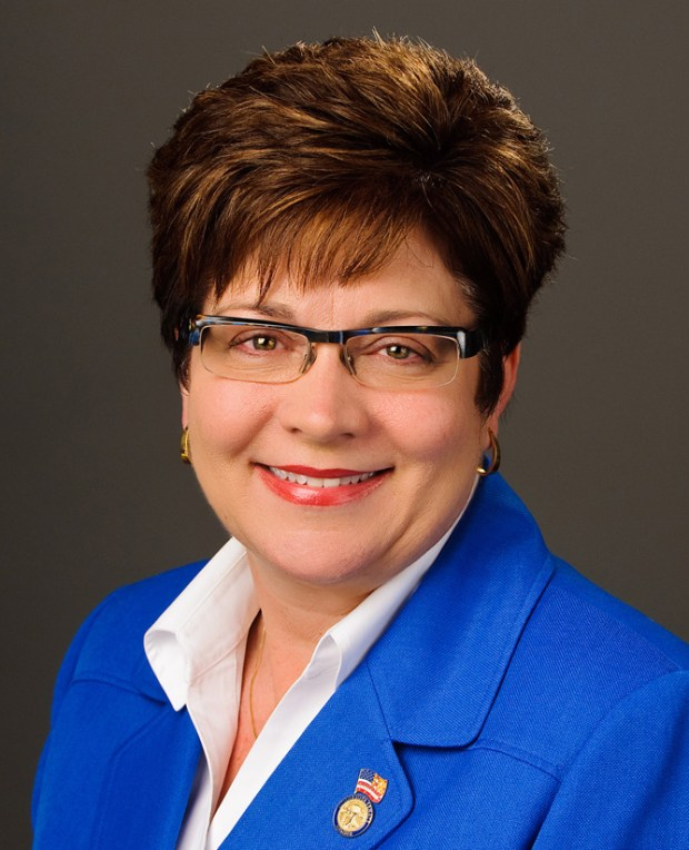 State Sen. Carla Nelson, R-Rochester. (Courtesy photo)