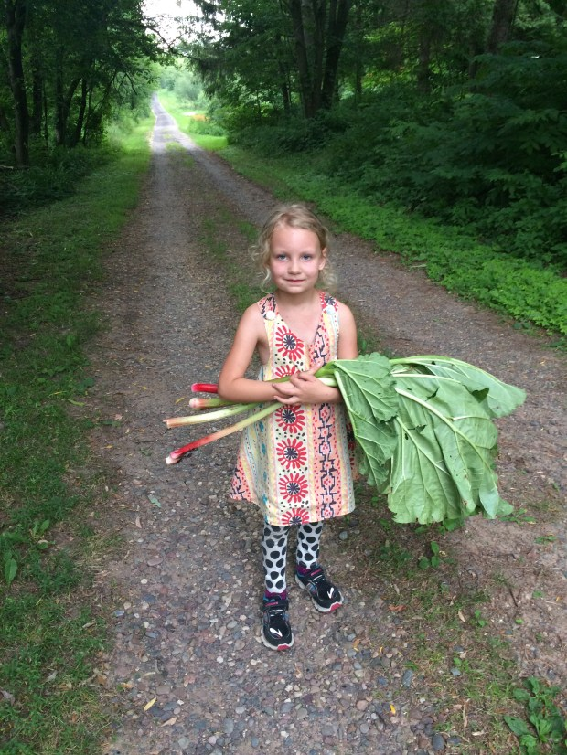 Georgia Williams, 6, harvests spring's first rhubarb stalks at her grandparents' home in the woods of Wisconsin. (Courtesy of Ingrid Weise)