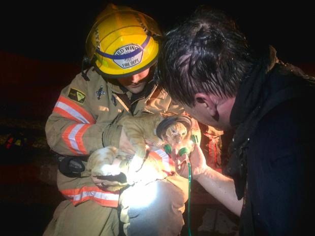 Red Wing firefighters administer oxygen to a cat they rescued Saturday, May 6, 2017, from a house fire. (Courtesy of Red Wing Fire Department)