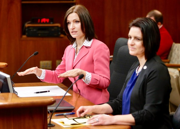 Lilia Panteleeva, executive director for the Children's Law Center of Minnesota, was a big advocate of McKenna's Law and continues to try and help get funding for the law. (Lilia Panteleeva / Courtesy Photo)