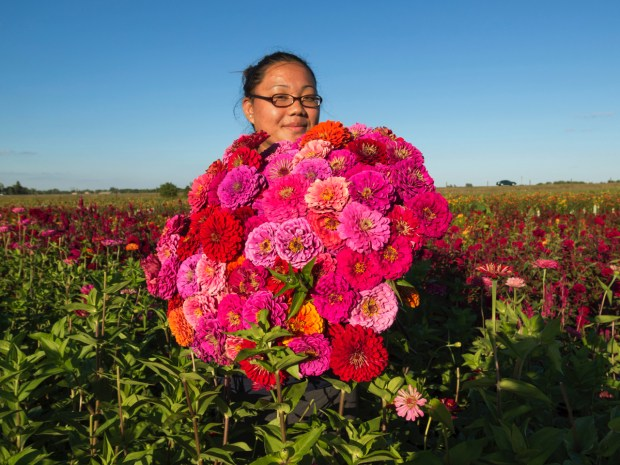 "An image from Mike Hazard's multimedia exhibit, ""Seeds of Change: A Portrait of the Hmong American Farmers Association,"" which opens Friday and runs through October at the Hastings Arts Center."