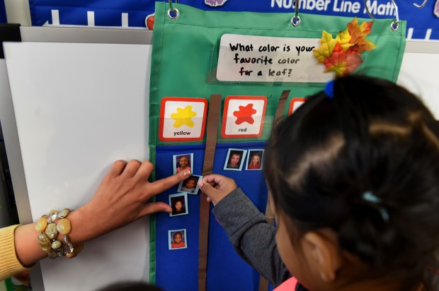 Students put their picture in the category of their favorite color for a leaf in Julie Heroff's preschool class at Castle Elementary School in Oakdale on Wednesday, Oct. 11, 2017. (Jean Pieri / Pioneer Press)