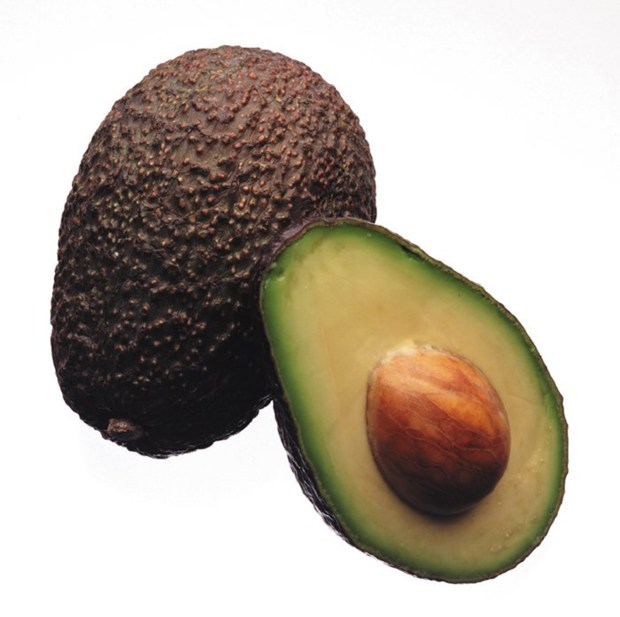 Holy guacamole! Specially treated avocados last twice as long. And that's only the start for the plant-based coating.