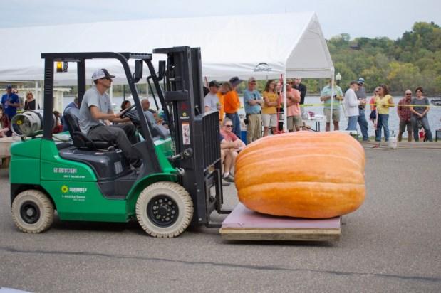 Let It Grow: Elsa Wins Giant Pumpkin Contest at Stillwater Harvest Fest