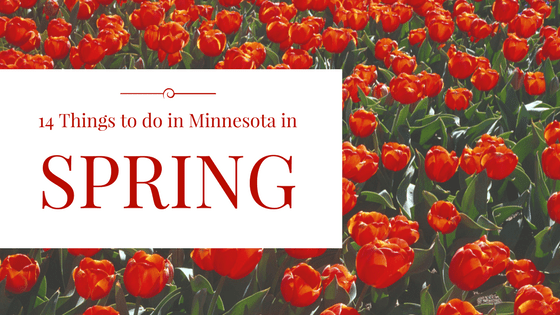 14 Things to do in Minnesota This Spring