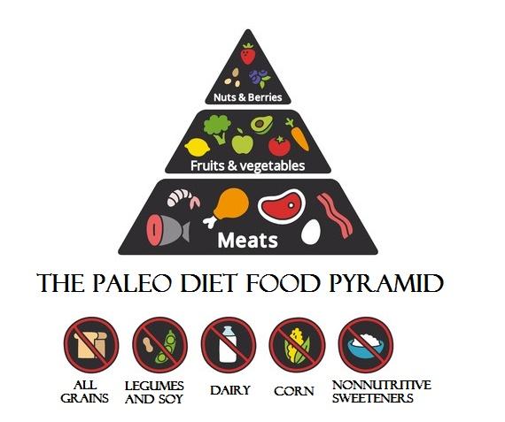 Paleo Diet Food Pyramid