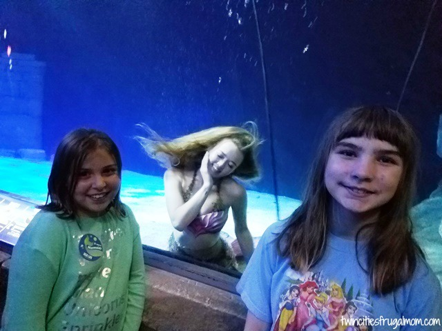 Sea Life Aquarium Mall of America Mermaids