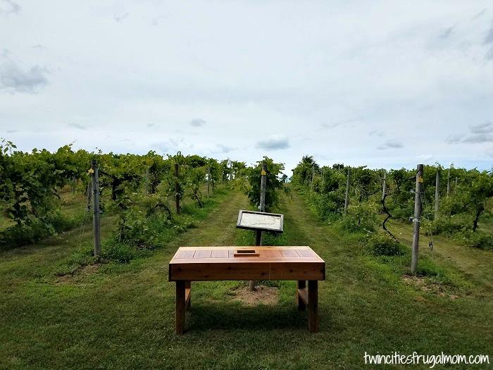 Wild Mountain Winery