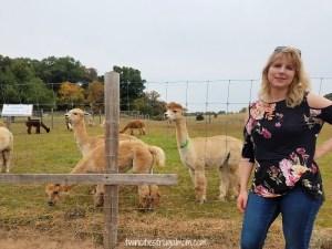 Foggy Bottom Alpacas