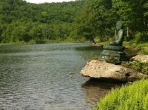 dbz-beech-lake-buddha