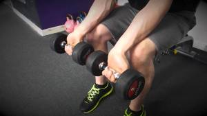 Wrist Curl With Dumbbells