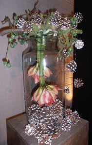 amaryllis in vaas