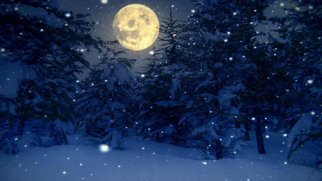 Christmas Snow Falling Wallpaper December Moon And Tree Quote Twisted Willows