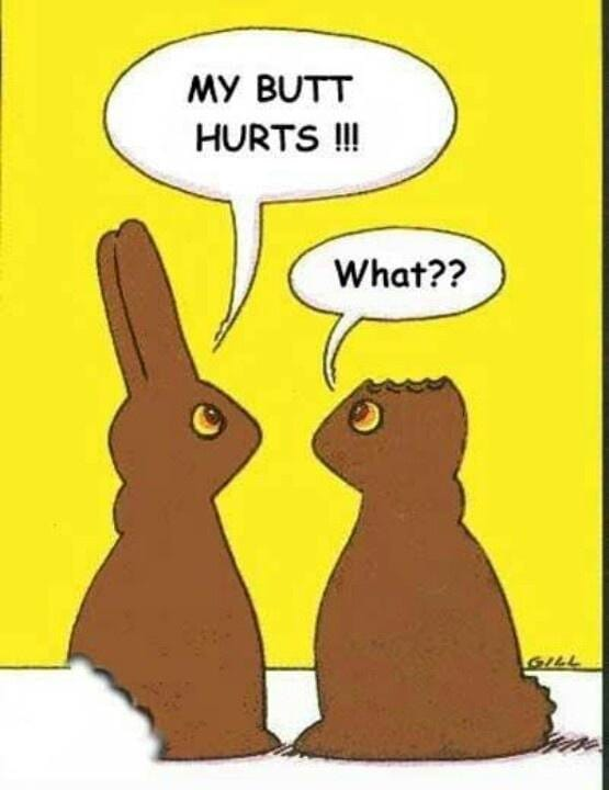 Chocolate bunnies without a but or ears