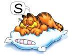 Garfield Sleeping
