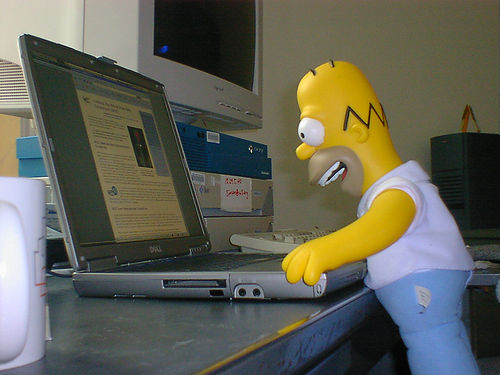 Homer Addicted To The Internet