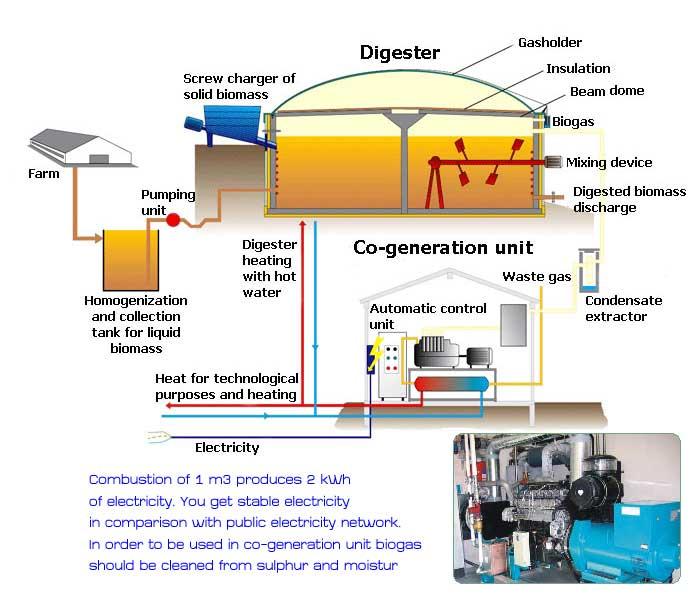 Biogas-plant-ww.twistingspokes.com