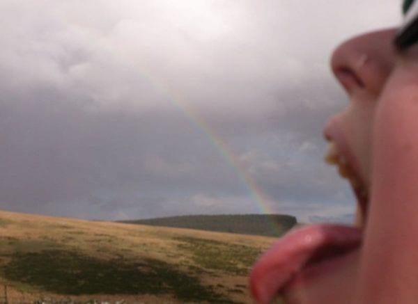 NAAB Rainbow