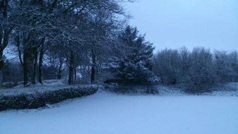 Snow Princetown