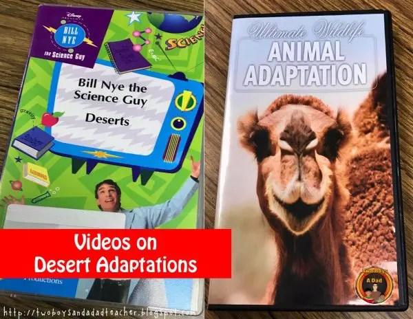 desert adaptations videos