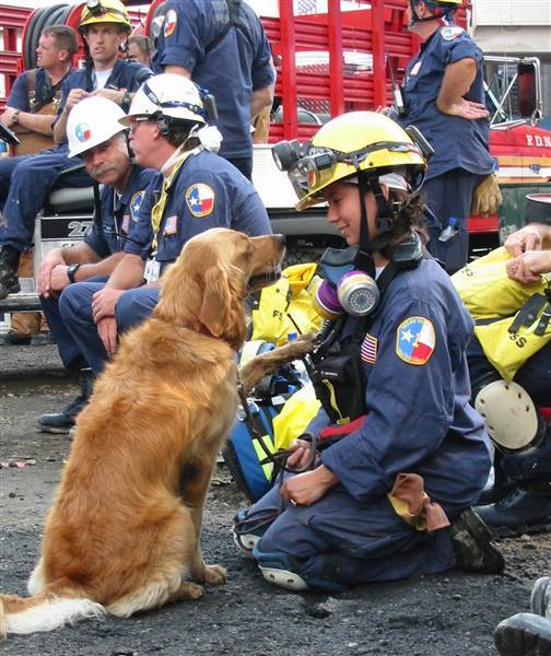 Last known remaining 9/11 search dog laid to rest; an overall American hero