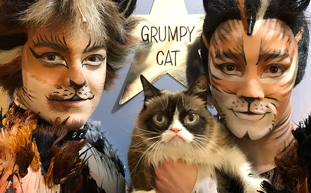 Grumpy Cat Breaks Glass Ceiling For Cats In Broadway Musicals